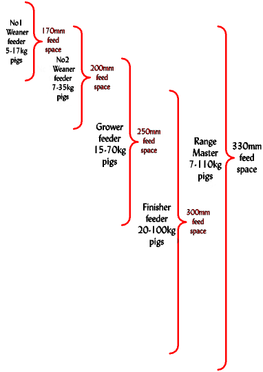Pig Growth rates|feed trough requirements